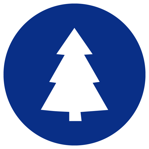 Holiday Tree Lighting icon