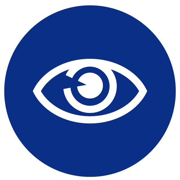 blue heading icons_eye.png